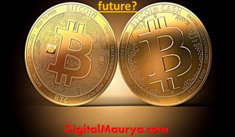 What is Cryptocurrency and what is it's future?
