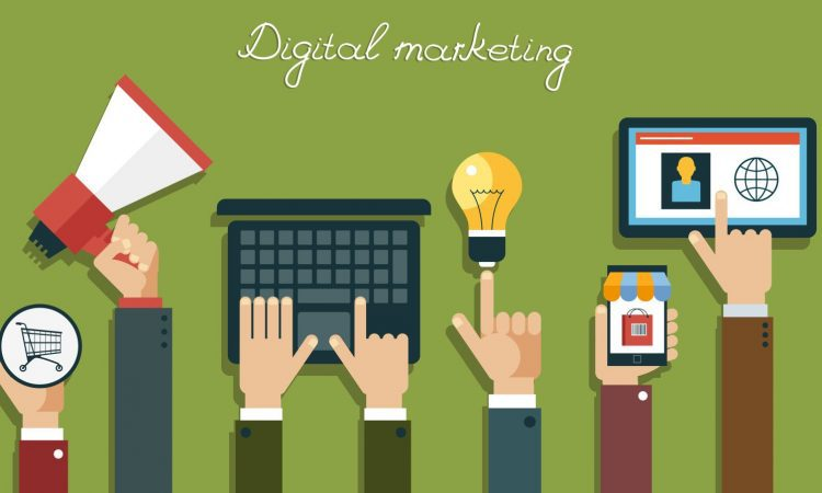 The role of SEO in the digital marketing