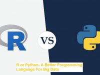 R or Python- A Better Programming Language For Big Data