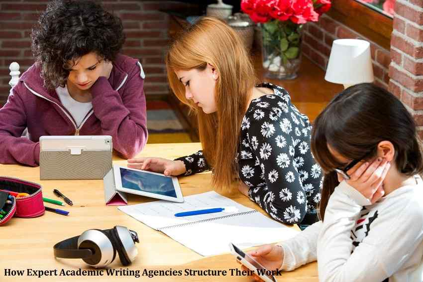 How Expert Academic Writing Agencies Structure Their Work