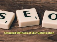 Standard Methods of SEO Optimization