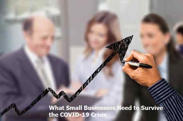 What Small Businesses Need to Survive the COVID-19 Crisis