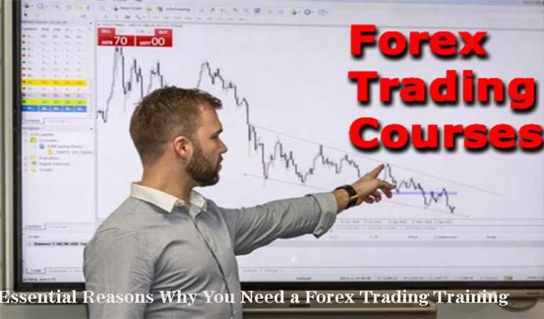 Essential Reasons Why You Need a Forex Trading Training