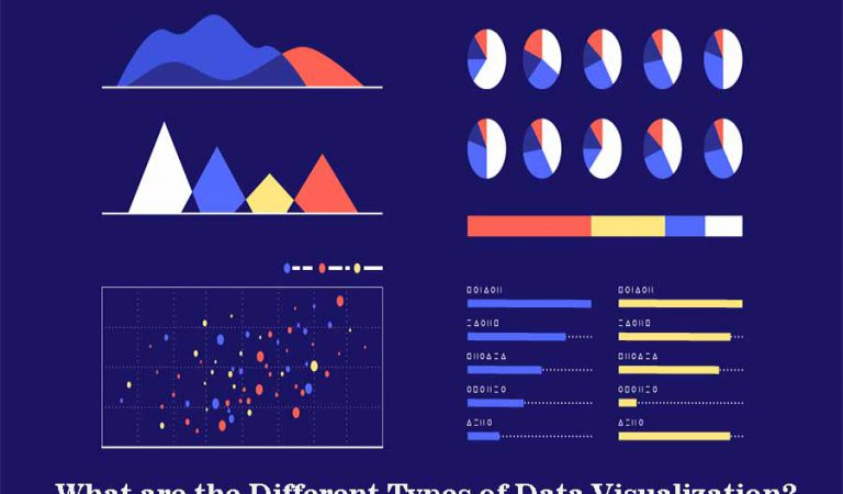 What are the Different Types of Data Visualization?