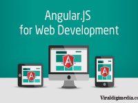 AngularJS for Web