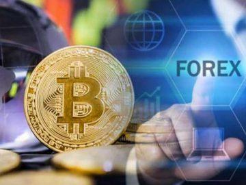 Crypto and Forex marketing