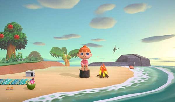 Animal Crossing New Horizons Games