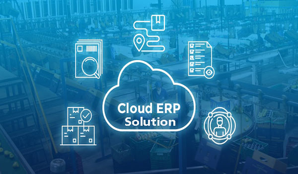 How Do Cloud ERP Solutions Work for the Retail and Fashion Industry?